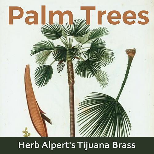 Palm Trees by Herb Alpert