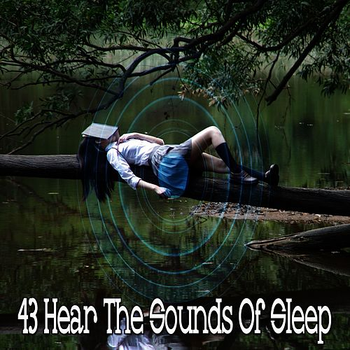 43 Hear the Sounds Of Sleep de Lullaby Land