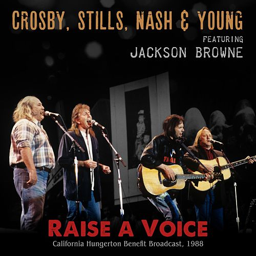 Raise a Voice by Crosby, Stills, Nash and Young