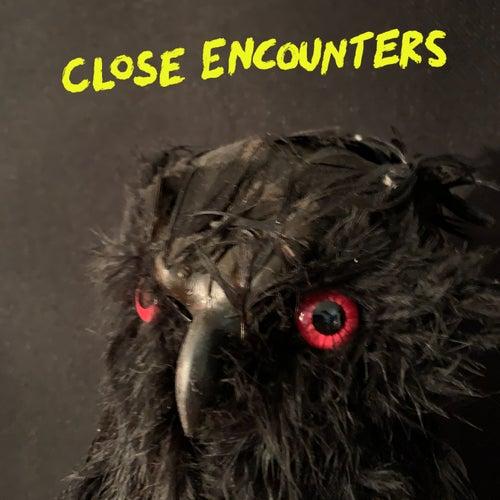 Close Encounters de Dearly Beloved