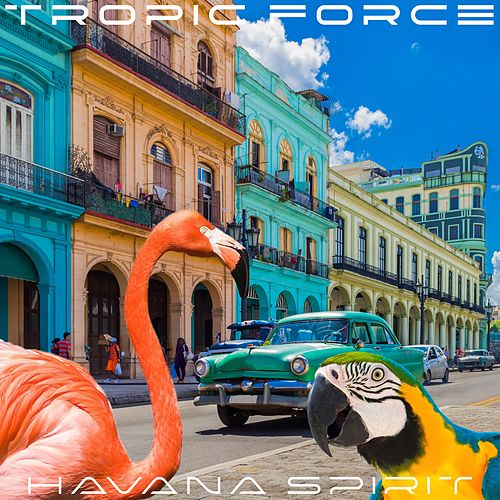 Havana Spirit von Tropic Force