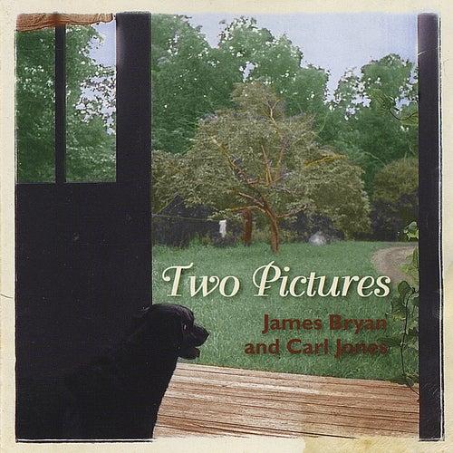 Two Pictures de James Bryan