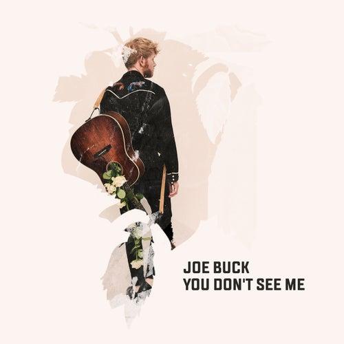 You Don't See Me von Joe Buck