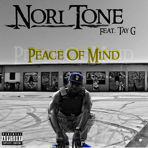 Peace of Mind by Nori Tone