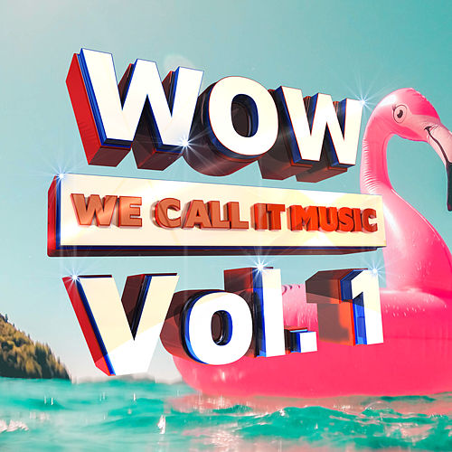 Wow We Call It Music, Vol. 1 by Various Artists