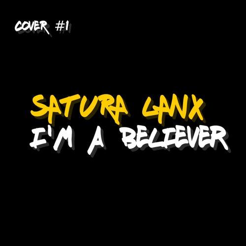 I'm a Believer de Satura Lanx