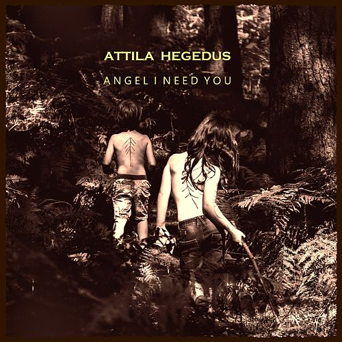 Angel I Need You by Attila Hegedus