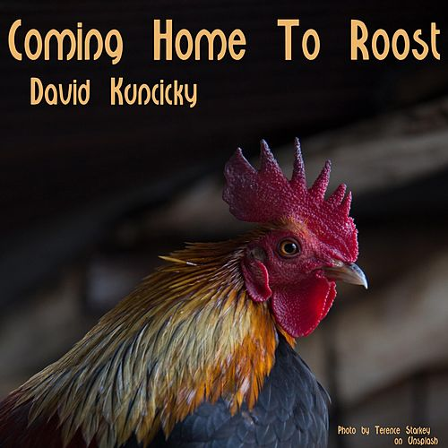 Coming Home to Roost de David Kuncicky