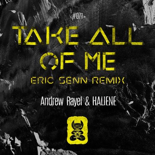Take All Of Me (Eric Senn Remix) de Andrew Rayel