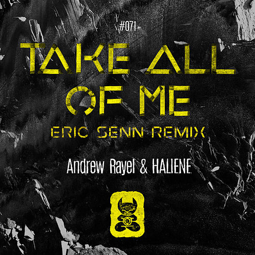 Take All Of Me (Eric Senn Remix) de Andrew Rayel