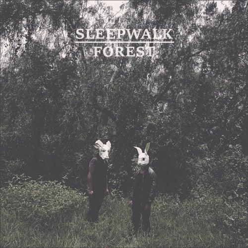 Sleepwalk Forest de Alleys Of Glass