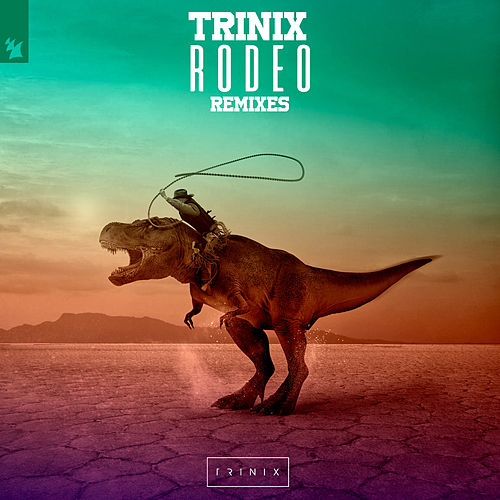 Rodeo (Remixes) de Trinix