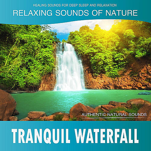 Tranquil Waterfall (Sounds of Nature) de Healing Sounds for Deep Sleep and Relaxation