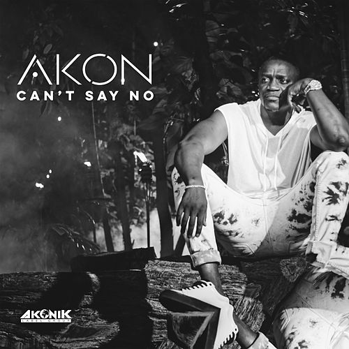Can't Say No de Akon