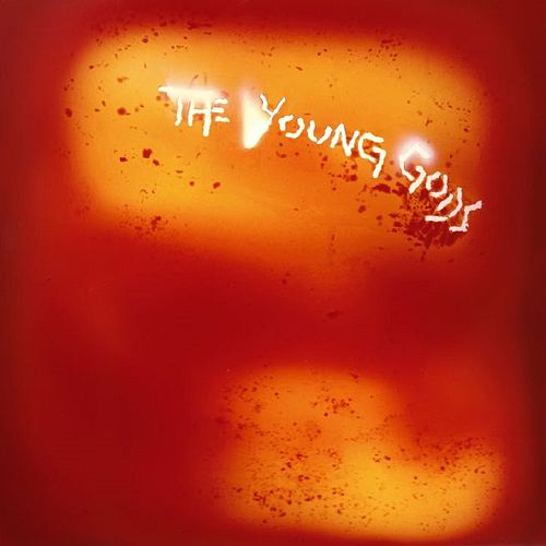 L'Eau Rouge/Red Water de The Young Gods