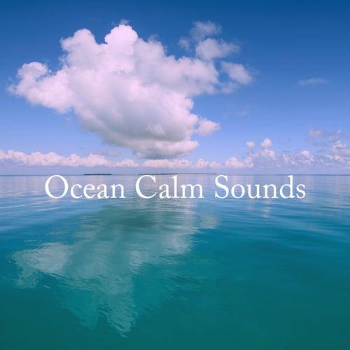 Ocean Calm Sounds de Ocean Waves For Sleep (1)