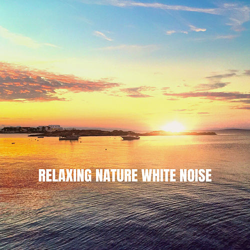 Relaxing Nature White Noise by Nature Sounds (1)