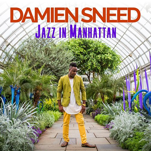 Jazz in Manhattan by Damien Sneed