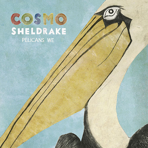 Pelicans We von Cosmo Sheldrake