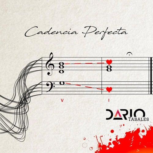 Cadencia Perfecta by Darío Tabales