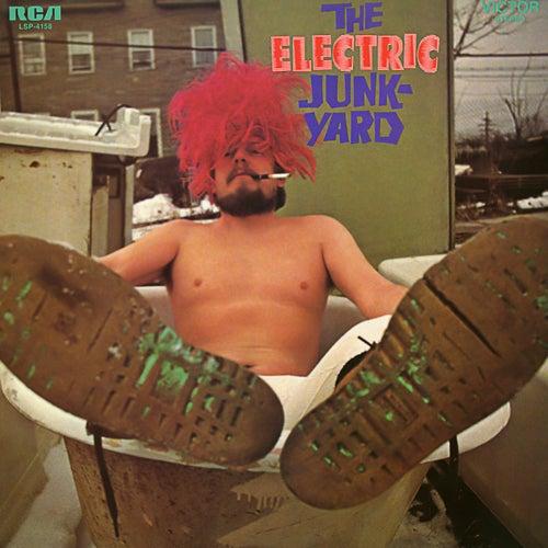 The Electric Junkyard by The Electric Junkyard