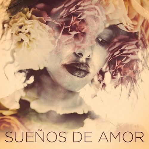 Sueños de amor de Various Artists