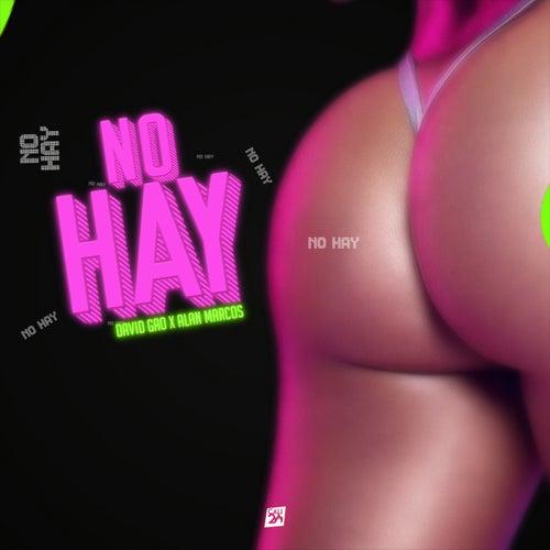 No Hay by David Gao