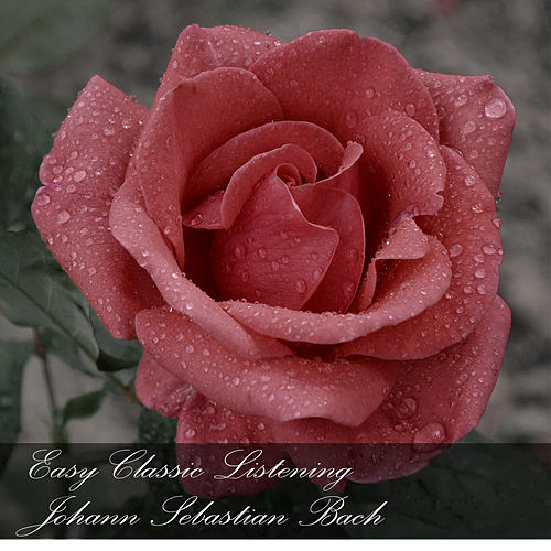 Easy Classic Listening: Johann Sebastian Bach de Johann Sebastian Bach