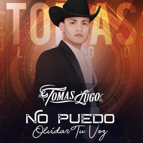 No Puedo Olvidar Tu Voz von Tomas Lugo