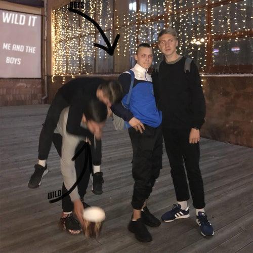 Me and the Boys de Wild IT