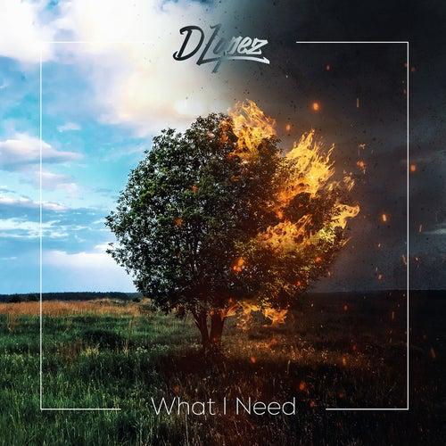What I Need de DLopez