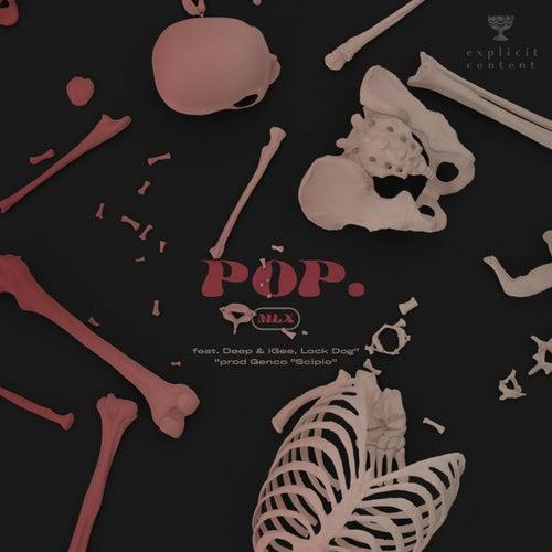 Pop by MLX
