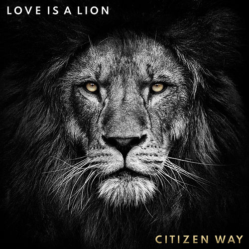 Love Is a Lion von Citizen Way