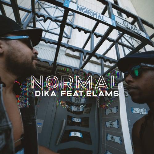 Normal de DIKA