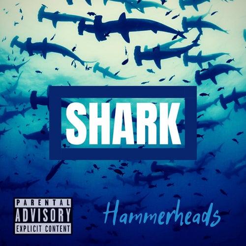 Hammerheads by Shark