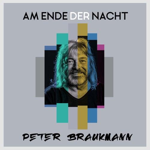 Am Ende der Nacht by Peter Braukmann