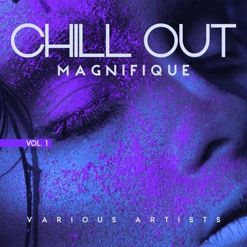 Chill out Magnifique, Vol. 1 de Various Artists