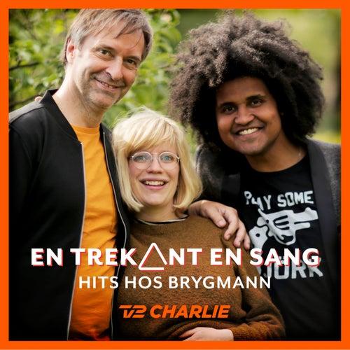 En Trekant En Sang 4 - Hits Hos Brygmann by Various Artists