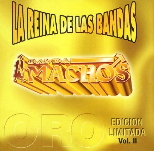 La reina de las bandas Vol. II de Banda Machos