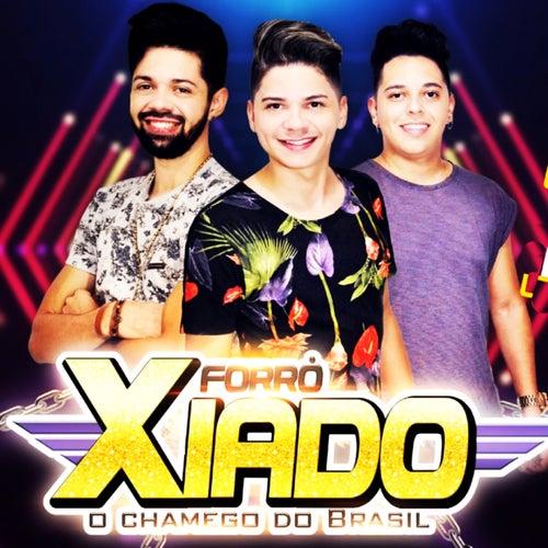 O Chamego do Brasil von Forró Xiado