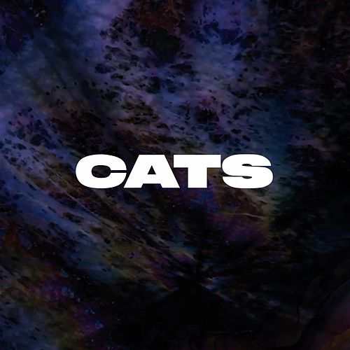 Cats by LIUN and the Science Fiction Band