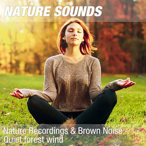 Nature Recordings & Brown Noise - Quiet forest wind by Nature Sounds (1)