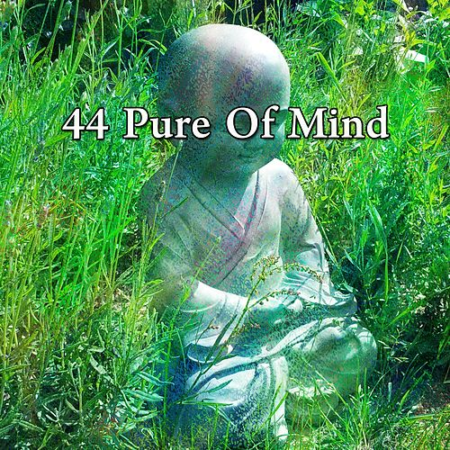 44 Pure of Mind von Lullabies for Deep Meditation
