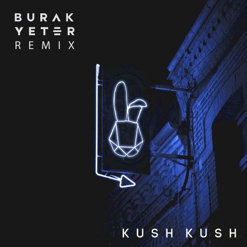 I'm Blue (Burak Yeter Remix) de Kush Kush