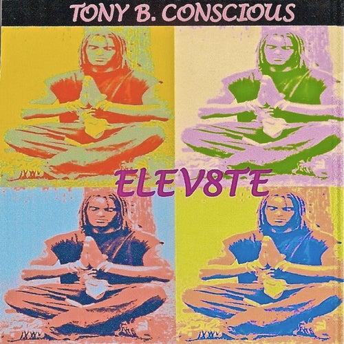 Elev8te by Tony B. Conscious