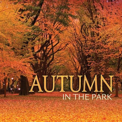 Autumn In The Park de Various Artists