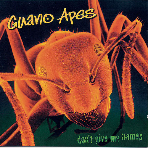 Don't Give Me Names von Guano Apes