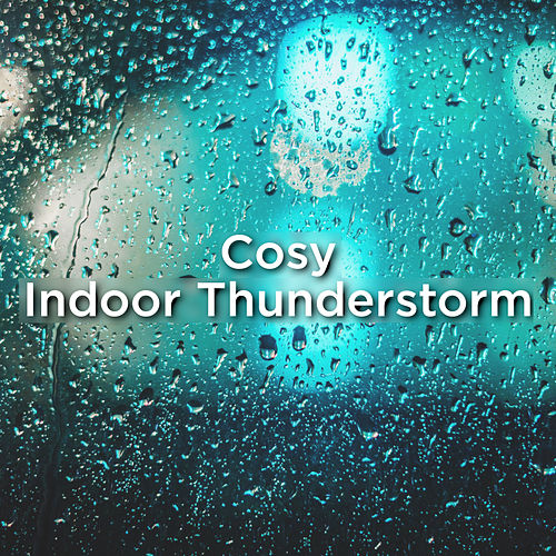 Cosy Indoor Thunderstorm de Thunderstorm Sound Bank