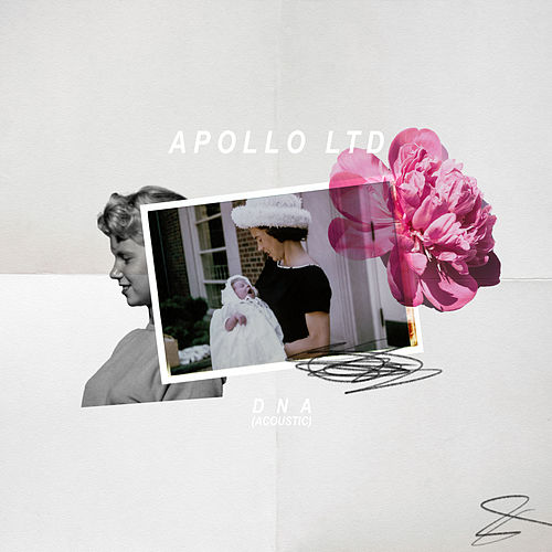 DNA (Acoustic) by Apollo LTD