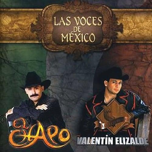 Las Voces De México by El Chapo De Sinaloa